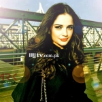 Armeena Khan Wallpaper 2