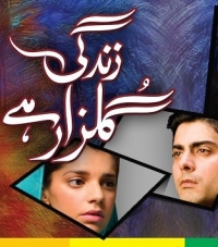 Zindagi Gulzar Hai fan club