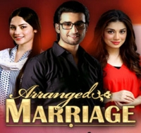 Arranged marriage dating show