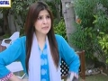 Bulbulay Episode 237 - 30 July 2013