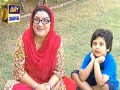 Bulbulay Episode 233 - 26th July 2013